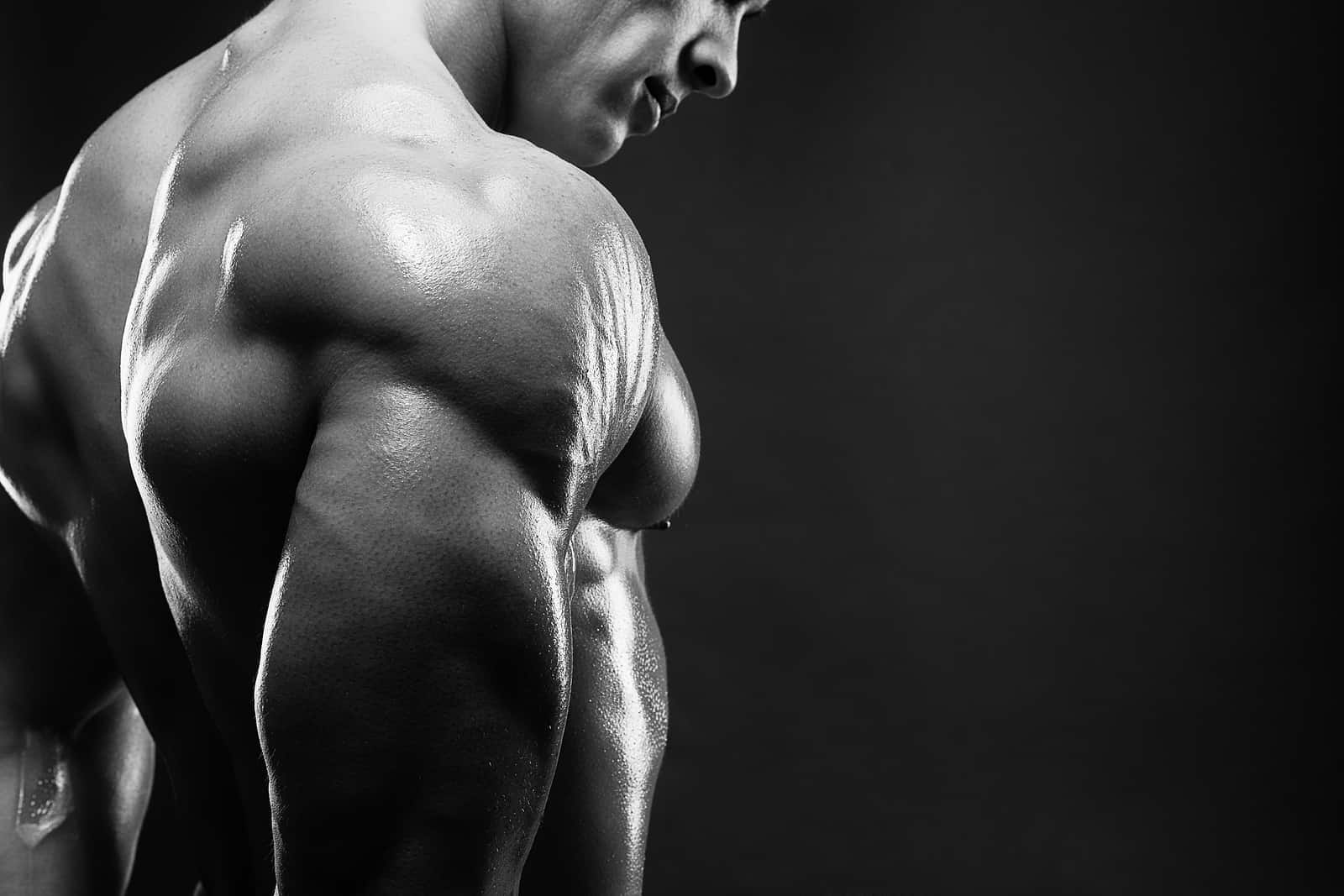 9 Foods That Add Muscle Mass And Keep You Lean